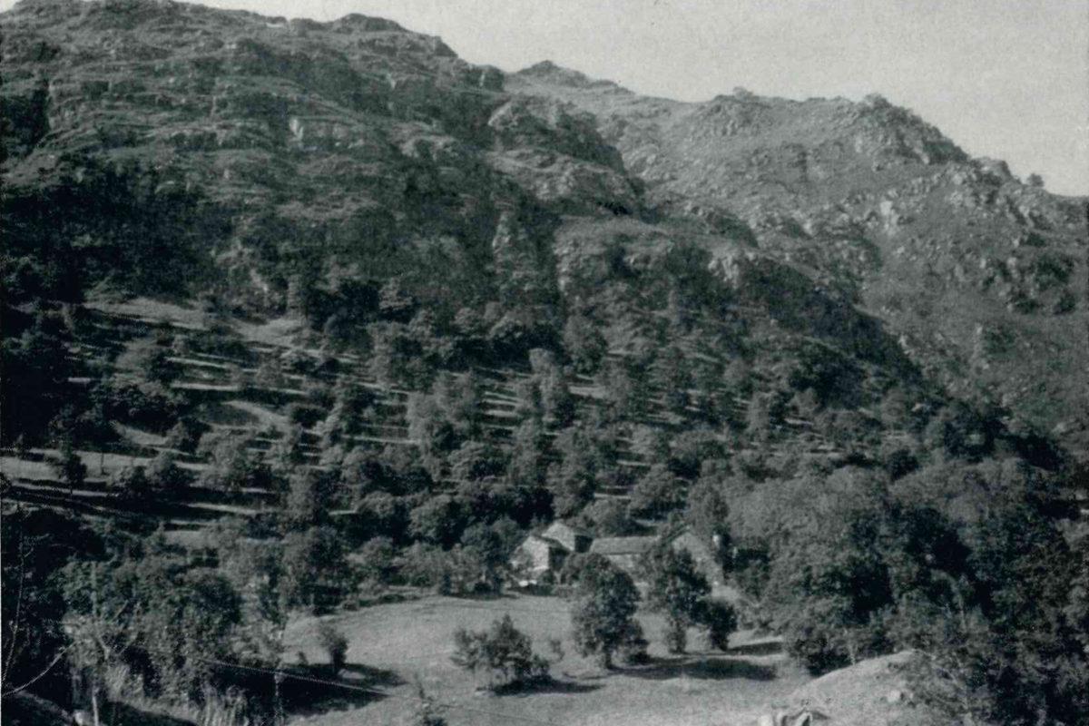 Capraga_Al-Ciutin_al-Bartùal