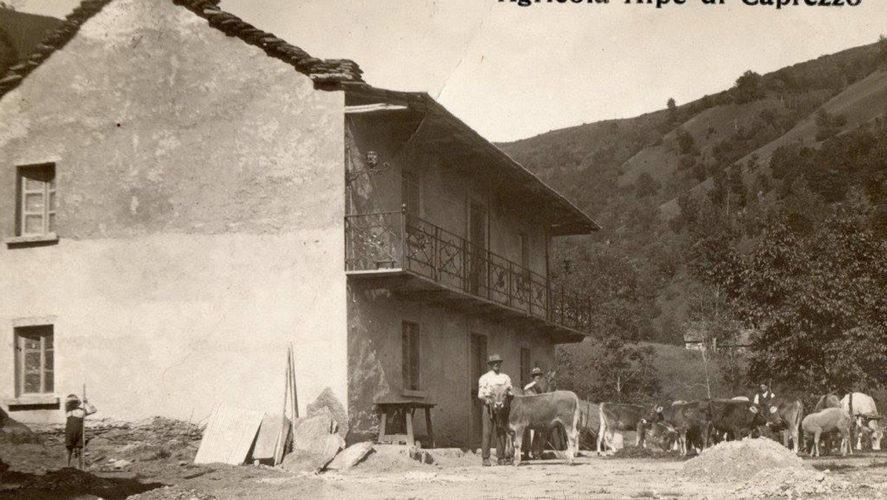 Caprezzo_Agricola-1923