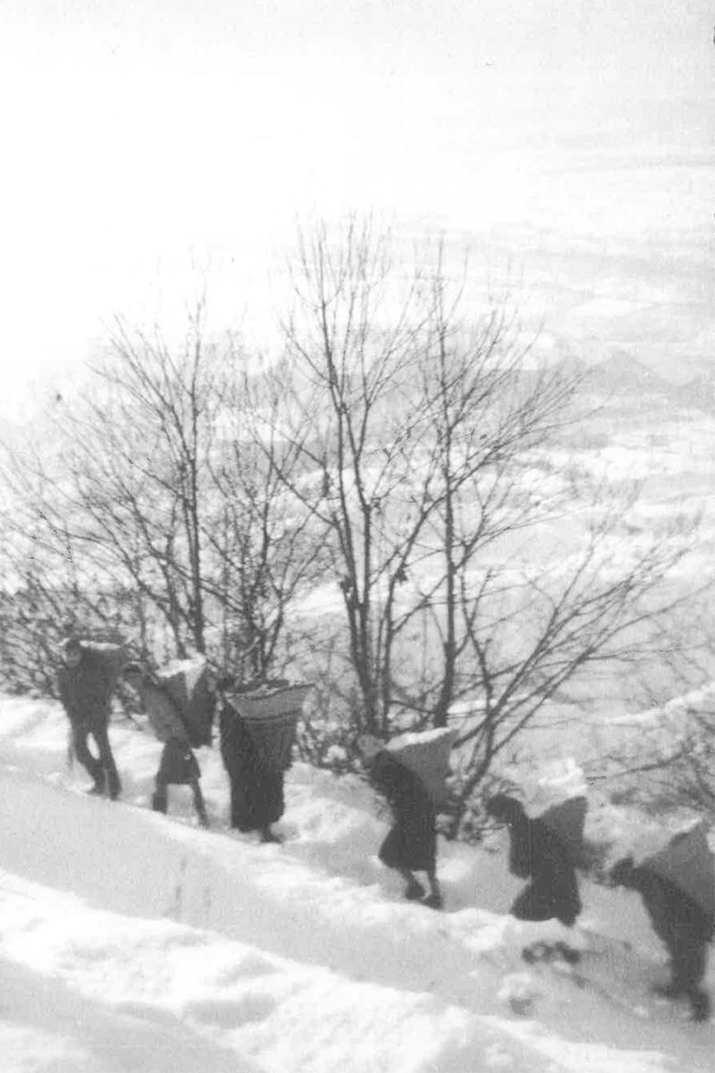Cuzzego-Cardezza_Processione-del-pane-16-gennaio-1980