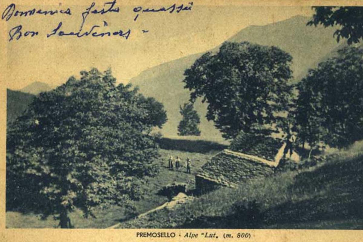 Premosello-Lut1964