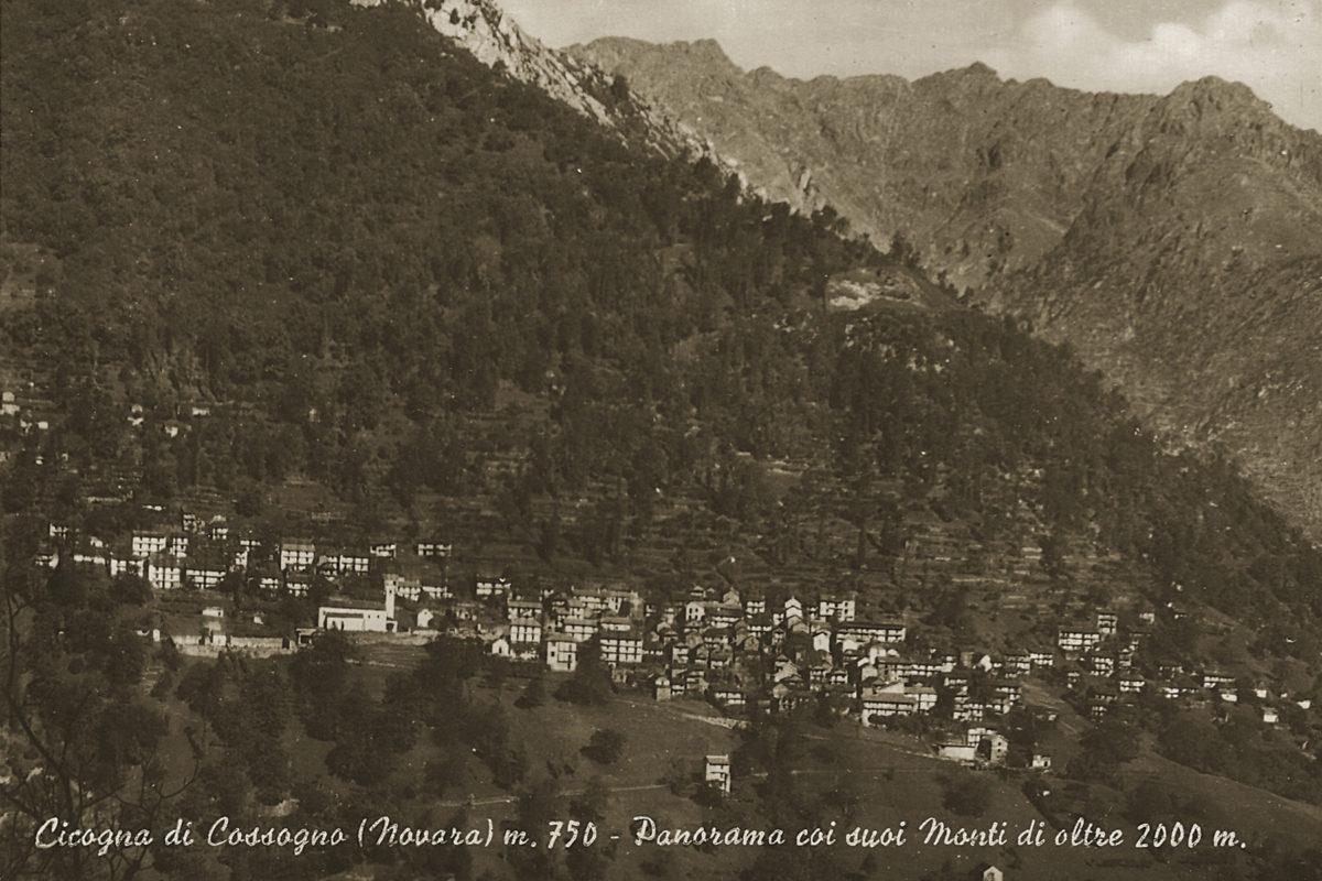 Cicogna_Panorama2
