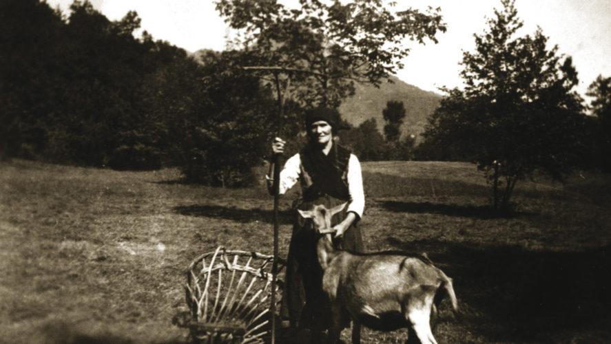 Cossogno_Savia-1940