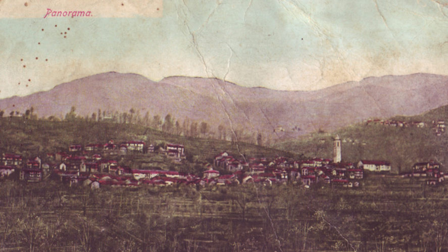 Cossogno_panorama3