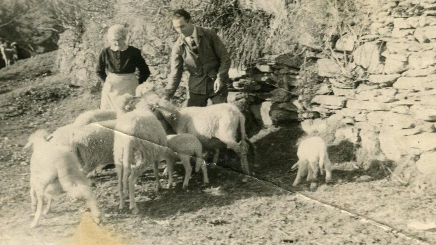 Cicogna_1959