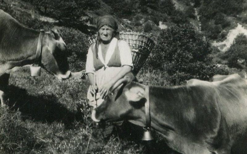 Intragna_donna-con-vacche-1931